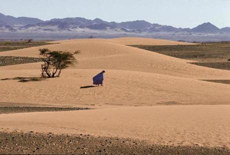 Western Sahara, near the Mauritanian border.